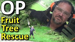 OPERATION Fruit Tree Rescue (with my Bluetooth Earmuffs) lol...