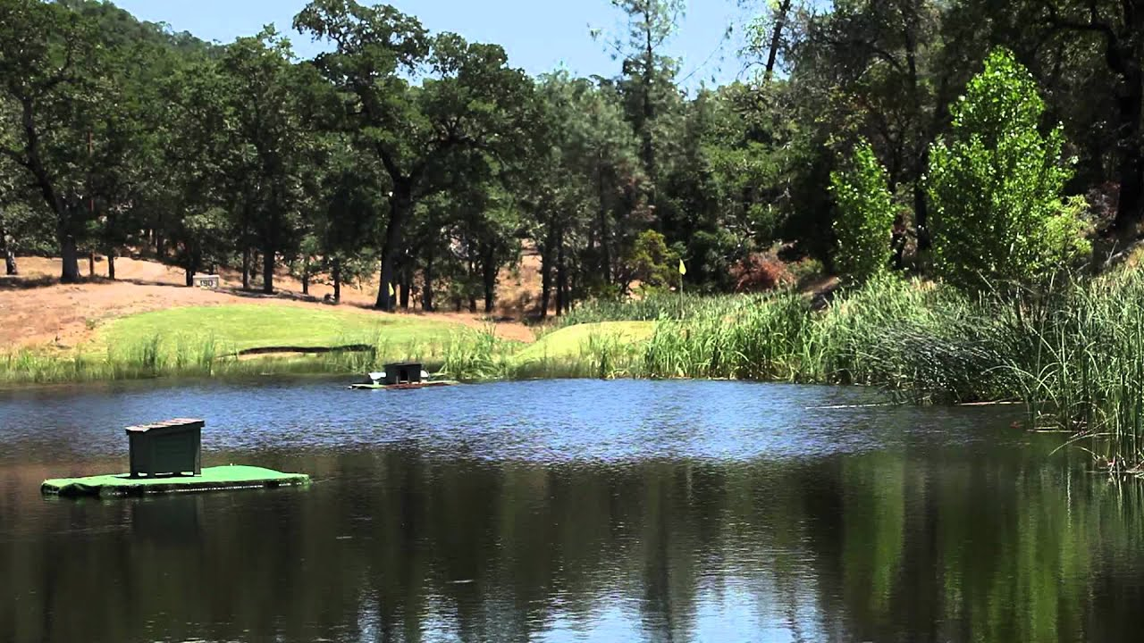 Fish eagle ranch for sale lower lake ca youtube for Lower salt river fishing