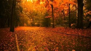 Самая Красивая Музыка о Нежности и Любви на Свете: Расслабляющая Музыка Для Души, Релаксации и Сна