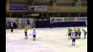 Women`s World Cup Edsbyn HT Bandy-Skirö