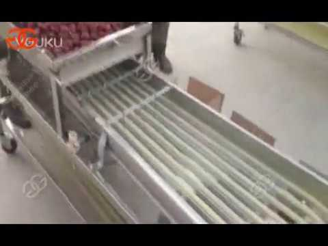Fruit And Vegetable Sorting And Grading Equipment Manufacturer Show