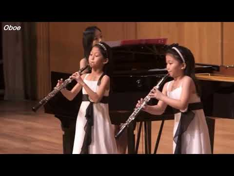 Wonderful Moments of Oboe, Clarinet, English Horn in Classical Music
