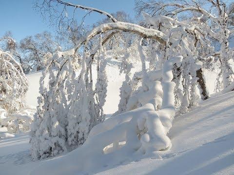 *SNOW* IN LOUISIANA, WORLDLY'S WINTER WONDERLAND 2018