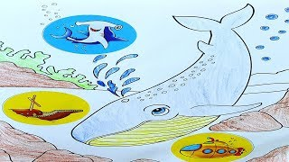 Coloring For Kids Sea Animals - Video For Children