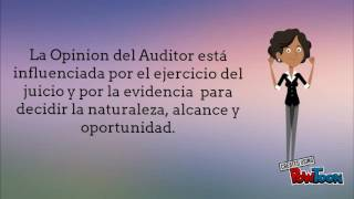 ECUADOR REGLEMENTEN VAN DE AUDIT-NEA 1 EN 2