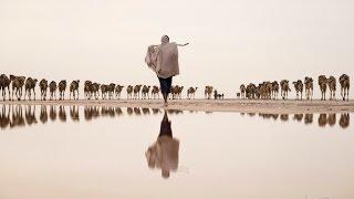 Working In 140°F Heat ,Salt Desert, The Danakil  Danakil  Depression Ethiopia.
