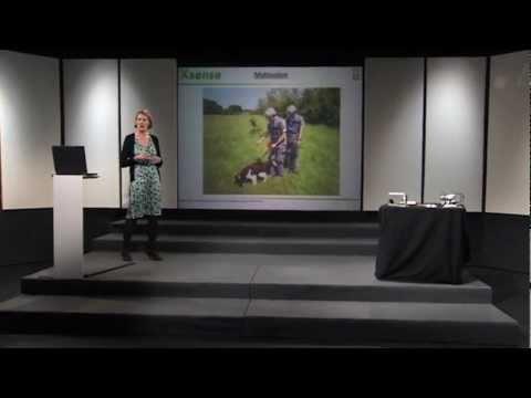 """""""Detektering af sprængstoffer"""" ved Anja Boisen, Professor, DTU Nanotech"""