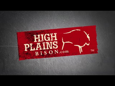 High Plans Bison - Joe Ricketts