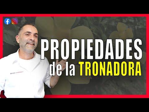 Propiedades y Beneficios de la Tronadora