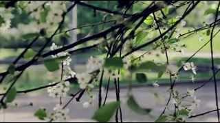 Пациенты film - 2015