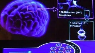 Eine klebrige Angelegenheit - Die faszinierende Welt des Gehirns (Science Slam)