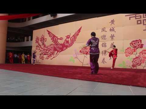 Wushu Performance by HC Wushu @CNY 2017