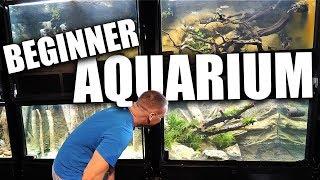 the-beginner-aquarium-is-done