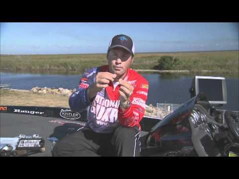 Monster Bass - 37 pound bag Lake Falcon vs Okeechobee