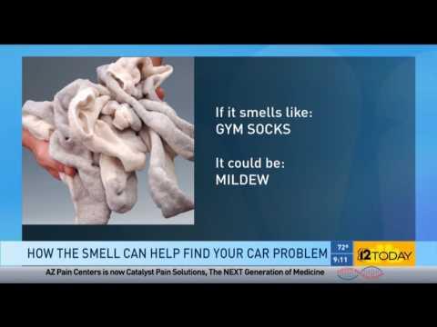 """NARPRO """"Nose"""" Automotive Diagnostics – What Does That Smell"""