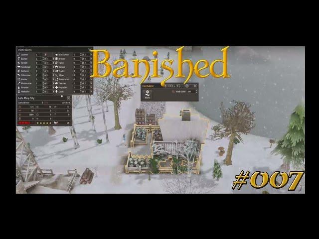 Let's Play Banished | Endlich Medizin | Folge #007