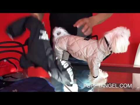 "Стеганная коллекция на атласе ""Puppy Angel"""