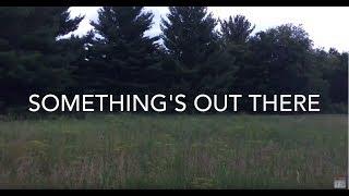 Bigfoot?: Breaking Branches - Kettle Moraine