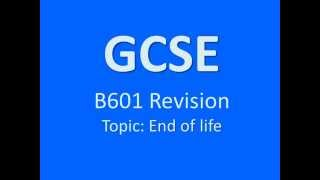 gcse revision unit b601 afterlife
