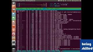 Monitoring Linux based Operating Systems using htop / System Monitor ( Ubuntu )
