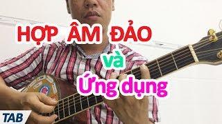 Hợp âm Đảo và Ứng Dụng dành cho guitar   học đàn guitar đệm hát   học guitar cơ bản online