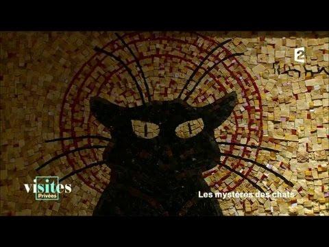 Le Chat Noir - Visites Privées