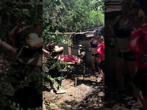 Video de Sola