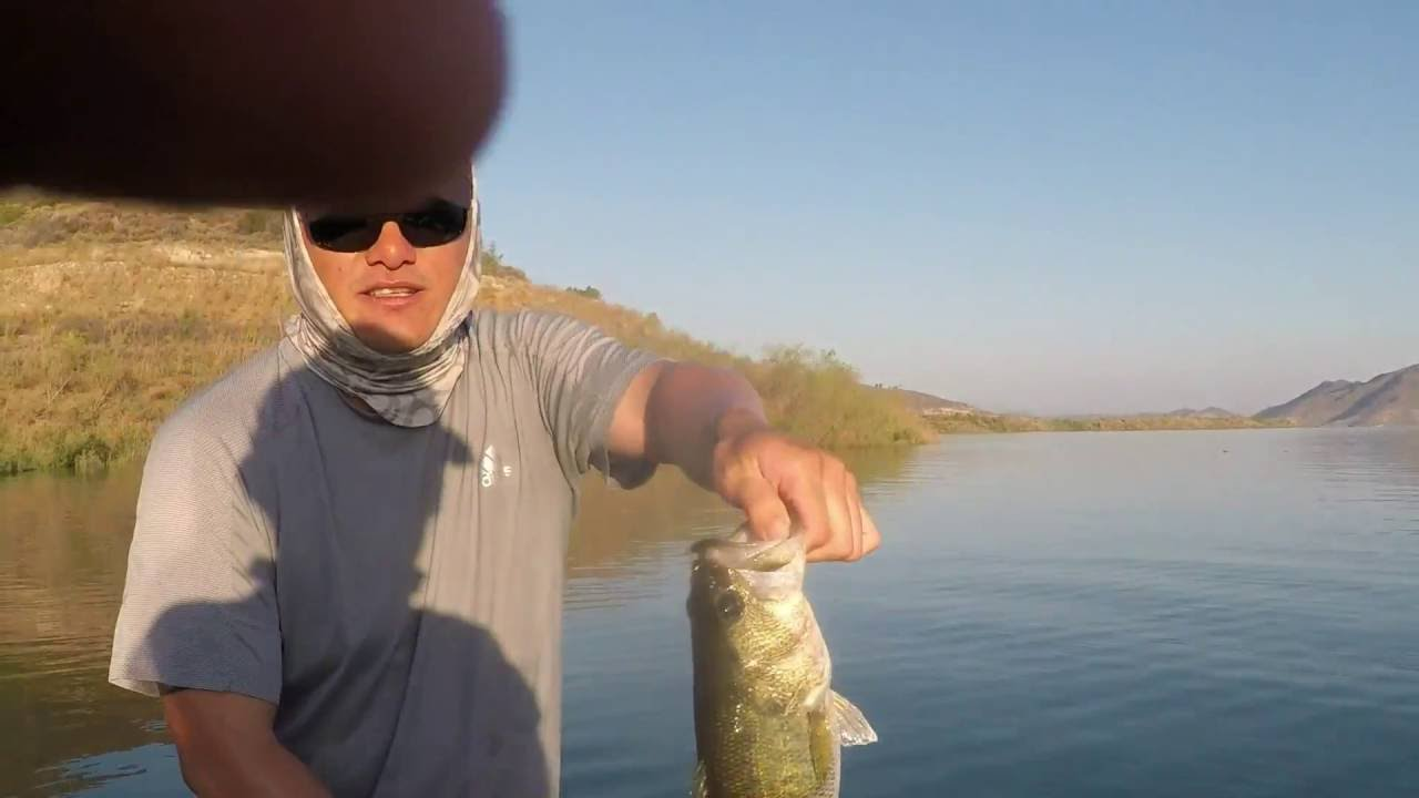 Summer bass fishing at diamond valley lake youtube for Diamond valley fishing report
