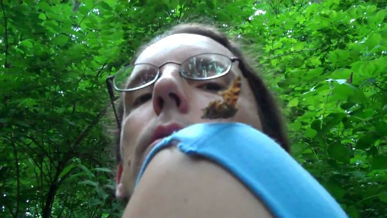 trammel fossil park trails a butterfly that was landing on me