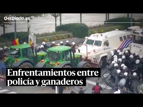 Enfrentamientos en Bruselas entre policía y ganaderos