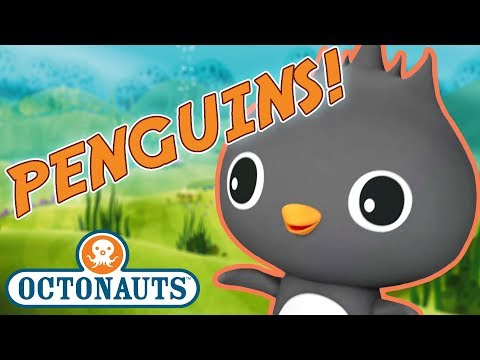 Octonauts - Learn about Penguins | Cartoons for Kids | Underwater Sea Education