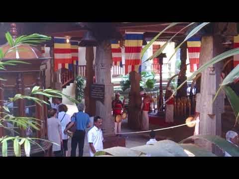 දේවාරාධනාව - Thewawa at Sri Dalada Maligawa