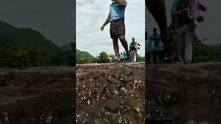 Vena mamu rangu / ithu vera mari gangu / Thirunelveli karan le