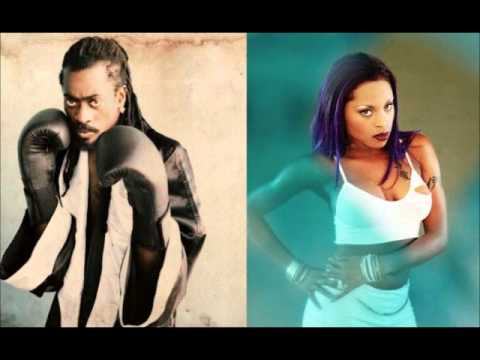 Beenie Man ft. Foxy Brown - Hmm Hmm (Remix) (2006)
