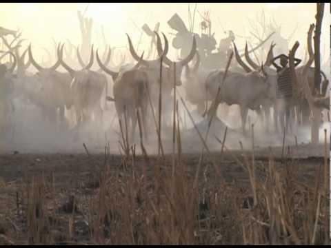 Dinka Catle Camp - Yirol, Southern Sudan