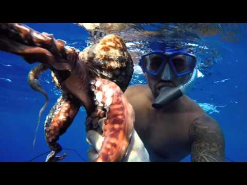 SPEARFISHING - GUAM