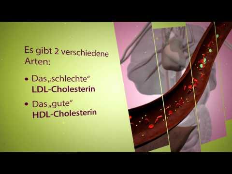 HEPALEAN - Der natürliche Cholesterin-Senker