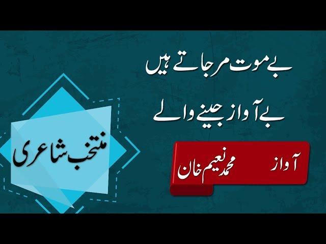 Best Urdu Poetry Collection | Bashir badr Urdu Poetry | ????? ???? ?????  ???? ???