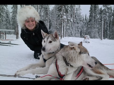 Husky sledding safari in Lapland Gopro 3+ Silver
