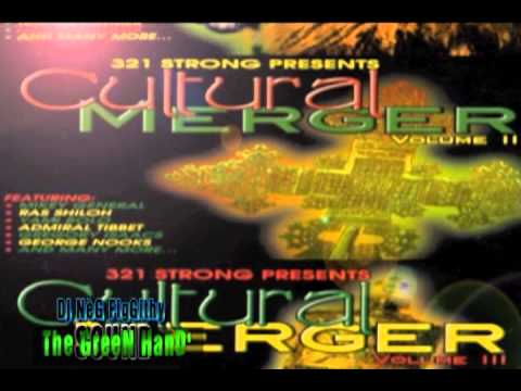 Cultural Merger Mix.