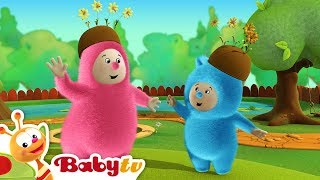 Billy Bam Bam Go Orange Picking- BabyTV