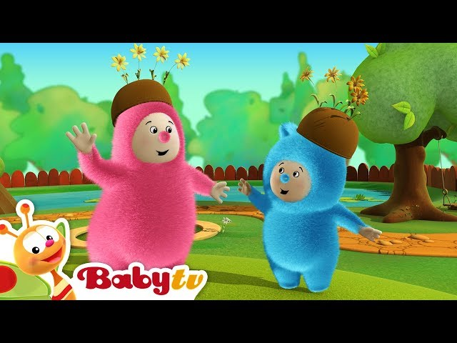 Billy Bam Bam | Orange Picking | BabyTV