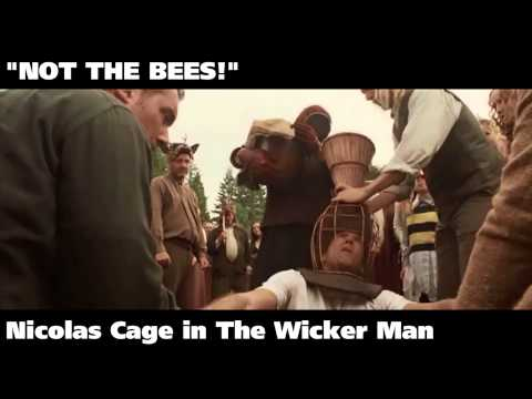 Top 15 Lines Screamed in Movies.