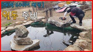 해발 600m 연못 월동 준비! 물고기, 키우기, 연못…