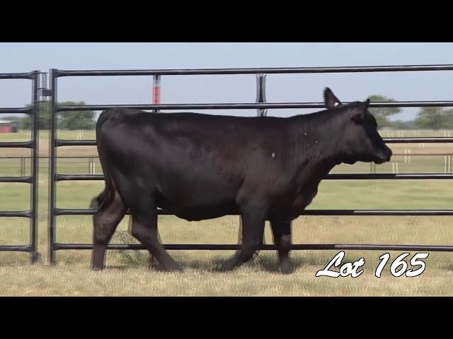 Pollard Farms Lot 165