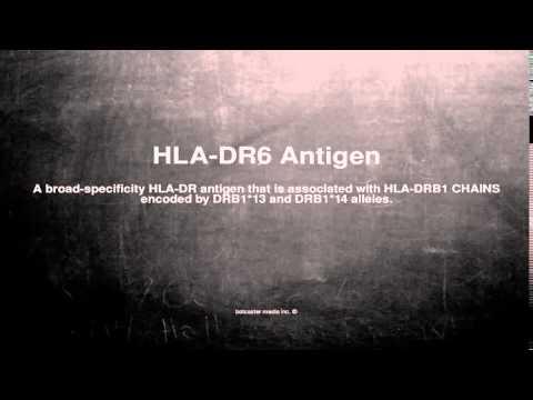 Medical Vocabulary: What Does HLA-DR6 Antigen Mean