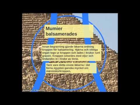 Egypten Högkulturen Vid Nilen