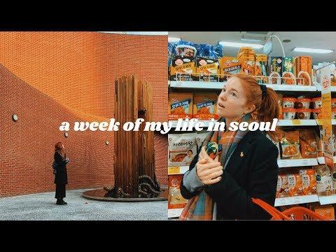 WINTER IS HERE 🥶 A Week Of My Life In Seoul, Korea Vlog