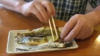 鮎料理フルコース やな川(根尾川) 撮影Sさん&たけちゃん