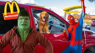 Earl The Golden Retriever PUPPY Drives Car to McDonalds With Spiderman!